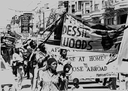 African People's Socialist Party-USA - History